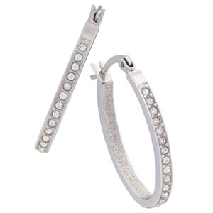 Picture of Crystal Hoops Silver